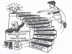 Principles of practice