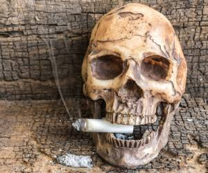 Osteoporosis and cigarette